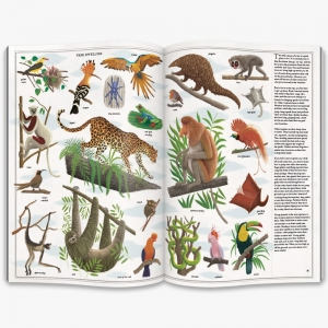 9780500651698_in03_the-book-of-trees